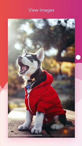 Foto do Story Saver – Quick Save Stories for Instagram