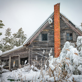 The Chimney by Carol Ward - Buildings & Architecture Decaying & Abandoned ( winter scene, winter, snow covered trees, snow, maryland, house, decaying, snow covered, abandoned,  )