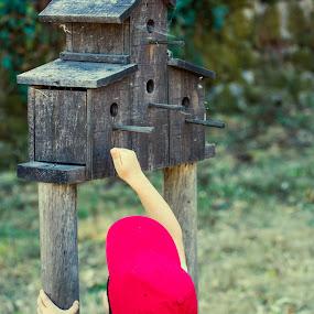 Anybody home? by Vasco Morais - Babies & Children Children Candids