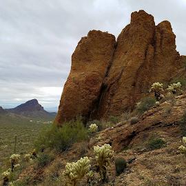Tough Climb by Tom MostlyGerman - Landscapes Deserts