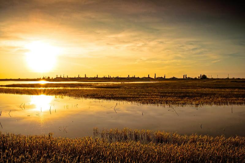 Photo: Fields of Vojvodina in Serbia