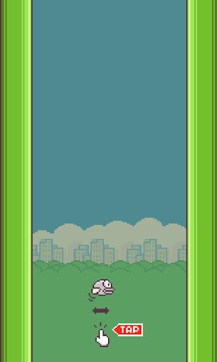 Flavi Bird