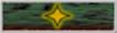 Borg Campaign Ribbon 2382