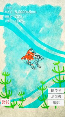 癒しの金魚育成ゲーム - screenshot