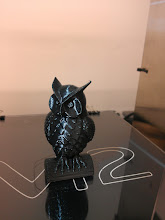 Photo: In this experiment you will require One sterilized, standardized, scientificized owl.
