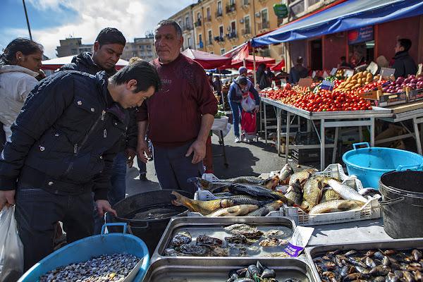 Il cibo è cultura, territorio, genti di FrancescoPaolo