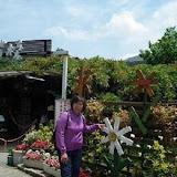 【竹子湖】苗榜花園餐廳