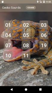 Gecko Sounds - náhled