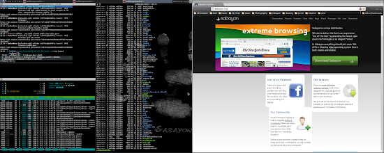 Photo: Logged into the awesome-wm, I get the feeling Sabayon home page isn't rendering properly in Chrome or Midori