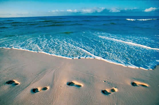 Remi @ Florida beach