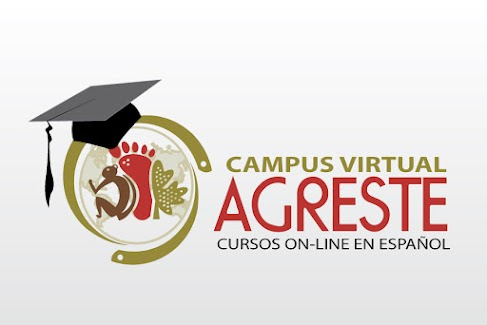 http://campus.multimediosagreste.org.ar