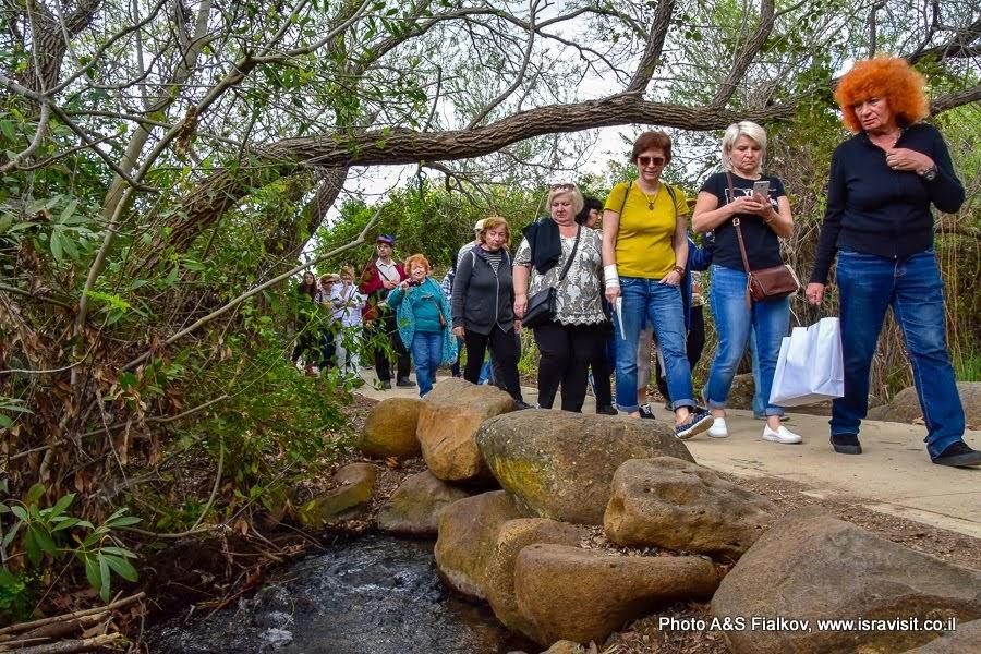 Пешеходный маршрут на экскурсии в национальном парке Тель Дан.