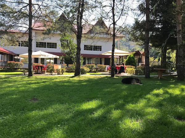 Arhavi Pınar Kır Evi