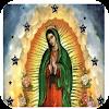 Virgen de Guadalupe Sagrada