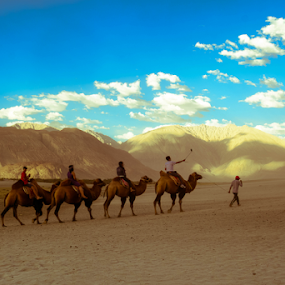 Journey by Ananth Eswar - Uncategorized All Uncategorized ( leh, ananth, india, ladakh, nubra, alphaphotography, anantheswar )