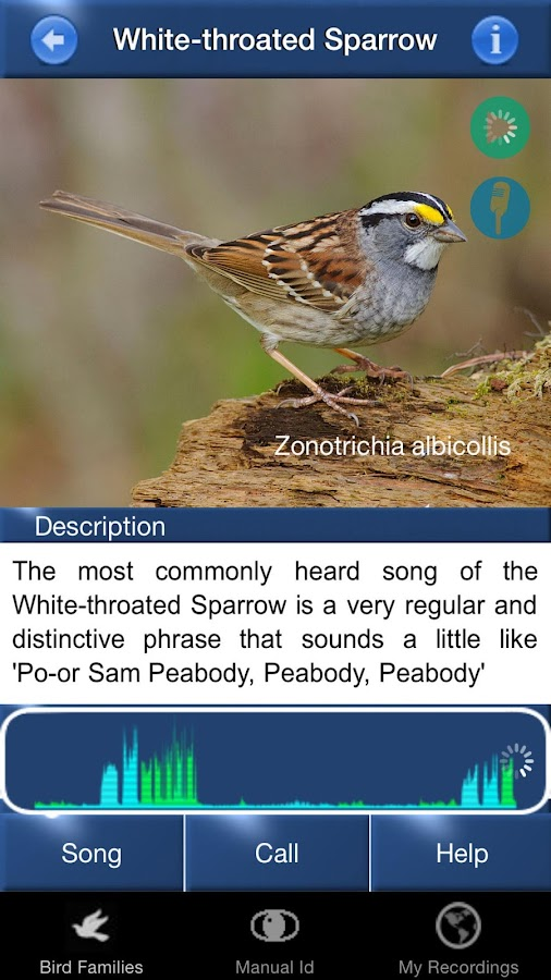 Bird Song Id: USA Automatic- screenshot