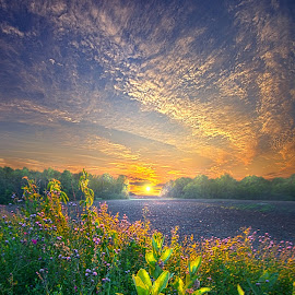 And The Hours Go By Like Minutes by Phil Koch - Landscapes Prairies, Meadows & Fields ( country, mood, vertical, clouds, office, scenic, life, colors, weather, season, lines, meadow, sky, wisconsin, art, emotions, living, journey, natural, nature, inspirational, inspired, portrait, heaven, horizons, morning, horizon, environment, outdoors, field, sunset, earth, dawn, travel, serene, landscape, photography )