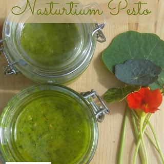 Nasturtium Pesto.