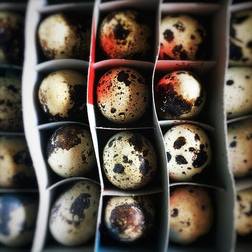 salt baked, chinese, hong kong, Quail Egg, recipe, roasted, salt, street food, 焗, 香港, 鵪鶉蛋, 鹽, homemade