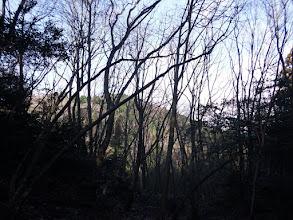 左に南宮山