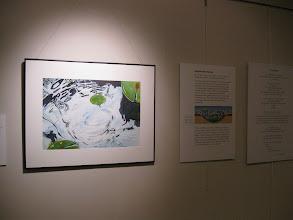 Photo: Ann Singsass, http://lter.limnology.wisc.edu/ltearts/exhibition/panel1