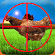 chicken chooter APK
