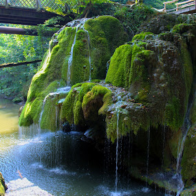 Bigar Waterfall by Alexandru Lupulescu - Landscapes Waterscapes ( waterfall )