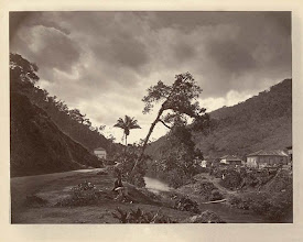 Photo: Avenida Barão do Rio Branco. Sentado na beira do Rio Piabanha está o fotógrafo responsável por esta foto, Marc Ferrez. Foto de 1874