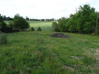 terrain à Mirande (32)