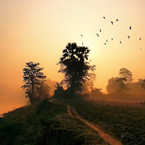 Sunrise in Bangladesh  by Shah Årif - Uncategorized All Uncategorized ( sunrise, village, bangladesh )