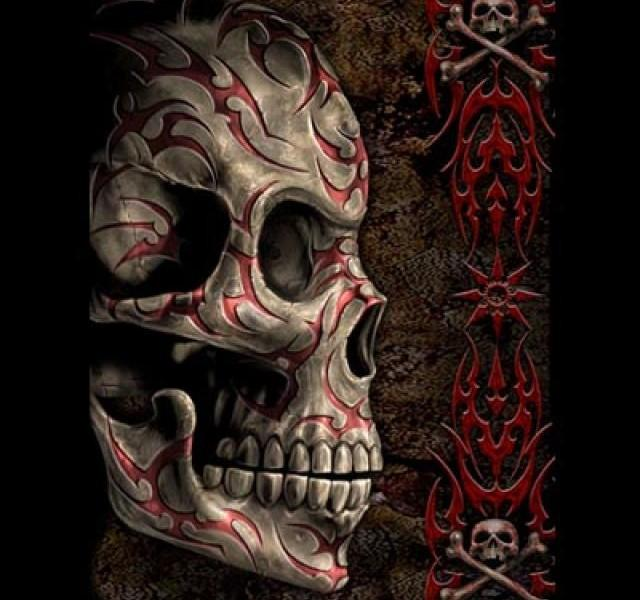 Skull Wallpaper Android Apps on Google Play