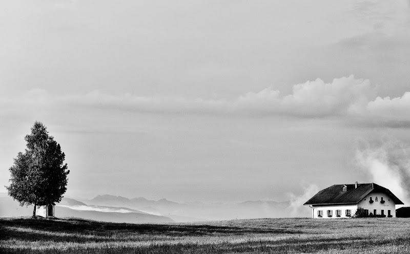 Casa, Cappella ed Albero di davide fantasia
