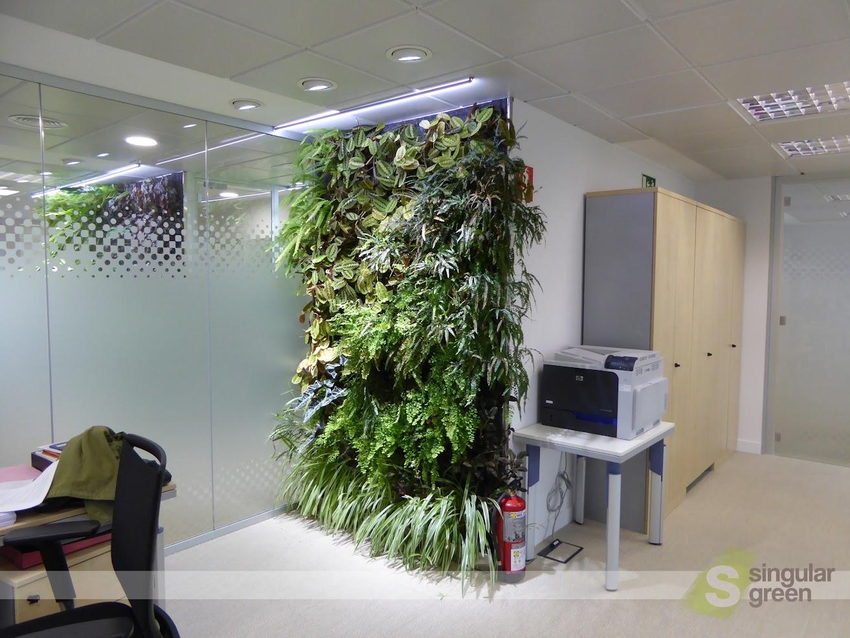 Jardines Verticales En Madrid 1 Ano Despues Singulargreen