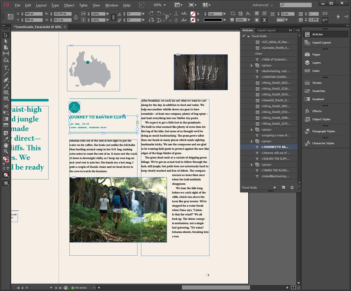 Adobe InDesign software