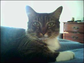 Photo: Maggie (2006)