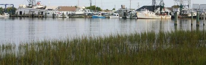 Photo: Photo courtesy Town of Beaufort and taken by David and Joshua McClure of Mosaic Design