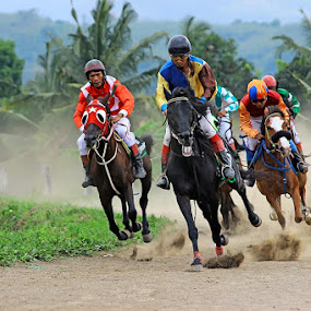 Berpacu by Hindra Komara - Sports & Fitness Other Sports ( horse, sports, racer, professional people, photography, competition,  )