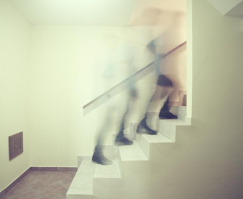 Su per le scale di renzodid