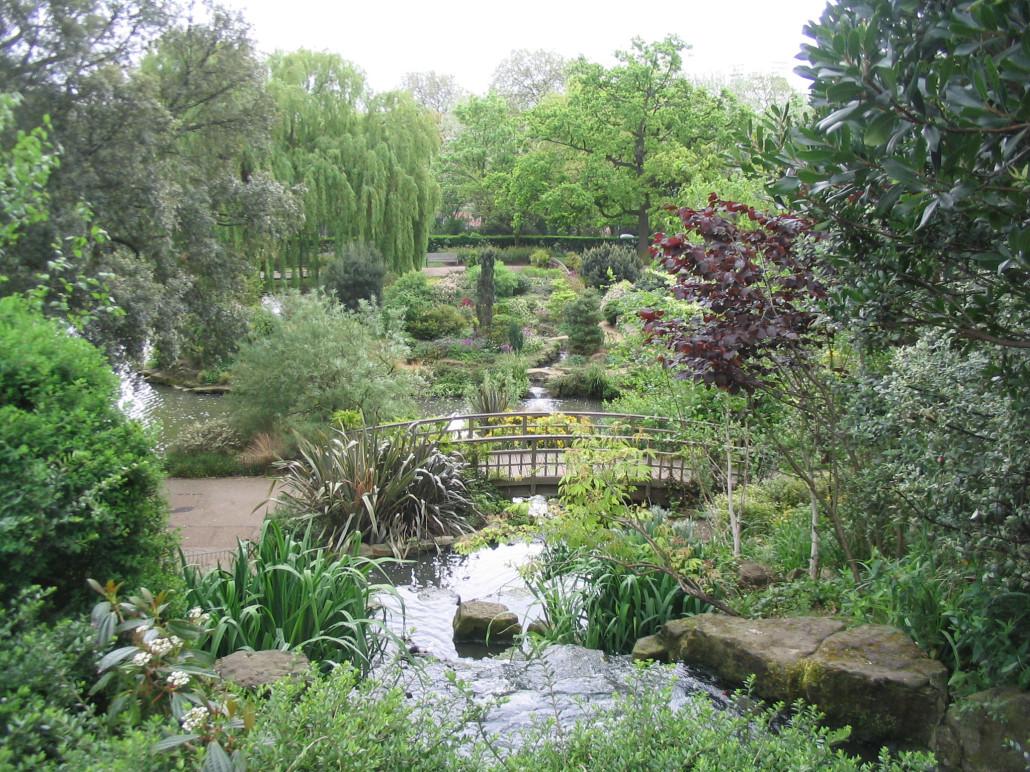 дикий сад фото