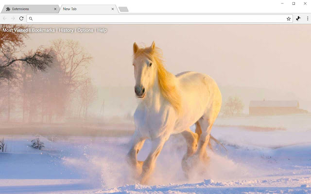 Horses Hd Wallpapers Horse New Tab Theme