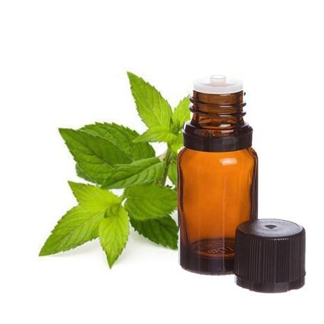https://sc01.alicdn.com/kf/UTB8uijWIVfFXKJk43Otq6xIPFXaf/Wholesale-Price-Mentha-Piperita-Oil.jpg