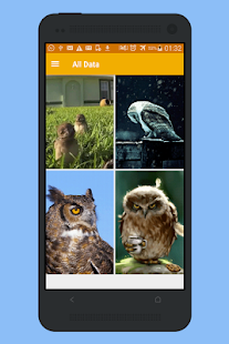 Owl Live Wallpaper HD- screenshot thumbnail