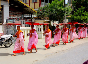 Photo: Year 2 Day 55 -  A Line of Nuns