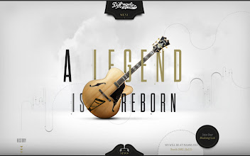 Photo: Site of the Day 20 February 2013 http://www.awwwards.com/web-design-awards/d-angelico-guitars