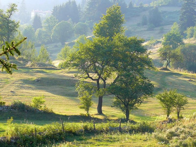 Разходка в Родопите - Езерово