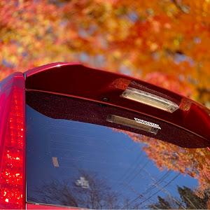 セレナ CC25 ライダー パフォーマンス スペックのカスタム事例画像 シェリルさんの2020年11月22日14:10の投稿