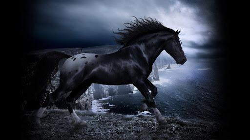 Heste baggrunde