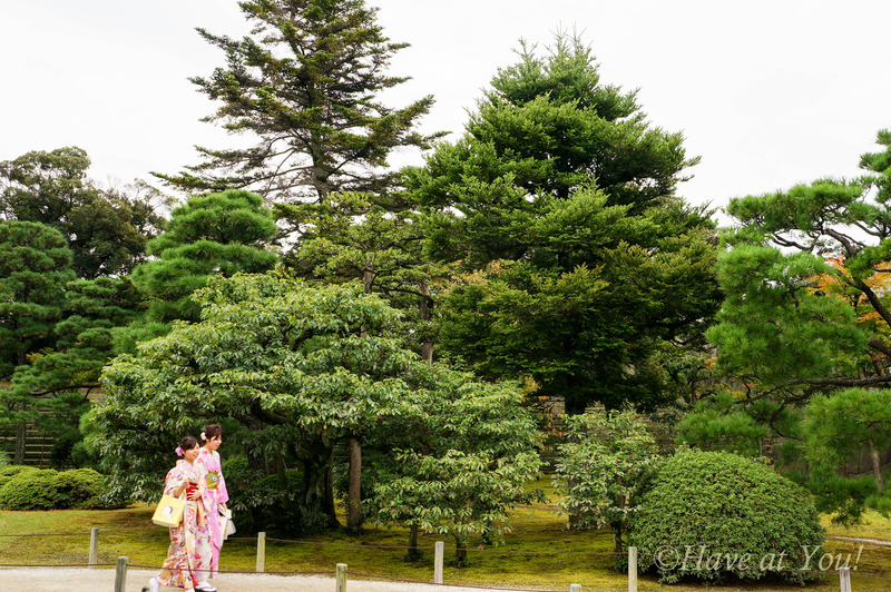 ladies wearing kimonos inside the Nijo Castle gardens