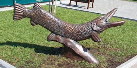 """Zdjęcie: """"Pomnik"""" szczupaka w Krzemieńczuku na Ukrainie (fot. Lexusuns/Wikimedia Commons)"""