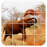 com.appham.tilepuzzles.africa.android